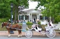 Going to the Chapel in a Little Rock Horse & Carriage