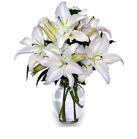 Beautiful Lily Arrangement