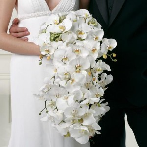 White Cascading Bridal Bouquet