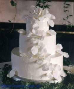 Elegant 2 Tiered Wedding Cake
