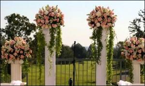 Roses on Columns