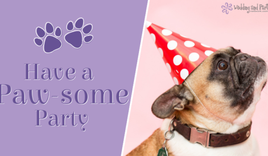Have a Paw-some Party for Your Furry Friend