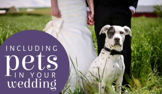 Including Pets in Your Wedding