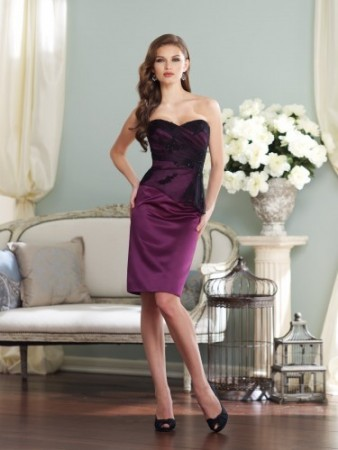Tulle and lace knee-length sheath