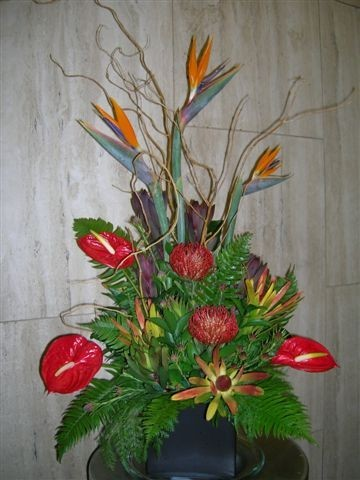Birds of Paradise Reception Flowers