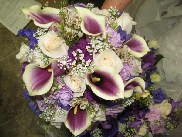 Gorgeous Purple And White Callas