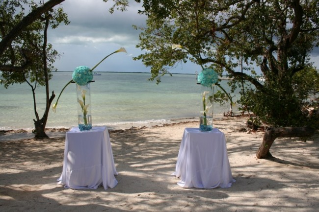 Even cooler these unique beach wedding centerpieces also include live fish