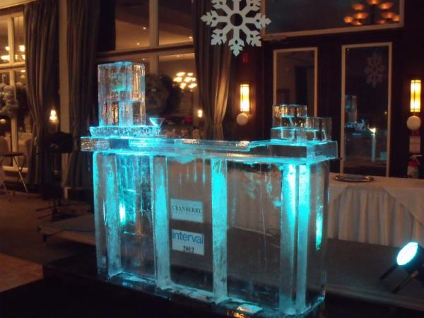Ice Bars and Martini luges