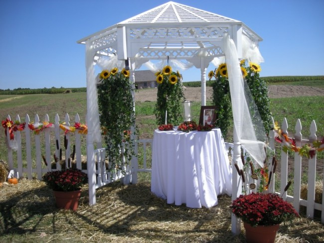 The beautiful white arbor has been decorated with sunflower and hanging ivy