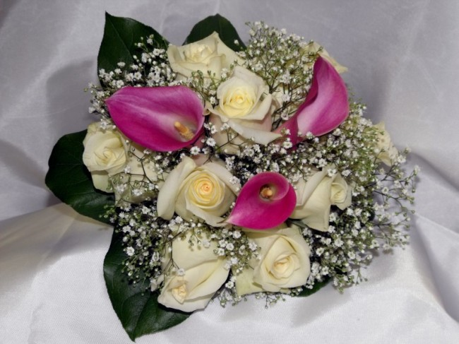 beautiful white rose flowers. [Beautiful White Rose Bridal