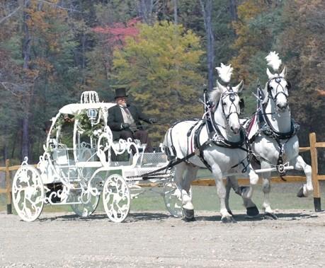 White Horse Carriage White Cinderella Carriage Ken