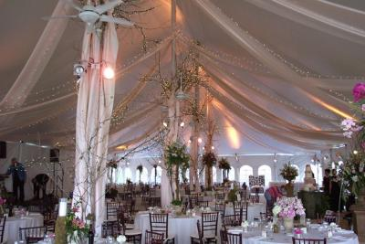 Tent Decor with Stunnight Lights & Arrangements