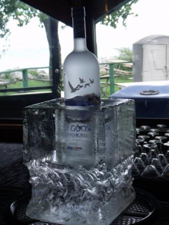 Ice Sculpture to Keep Bottle Chilled