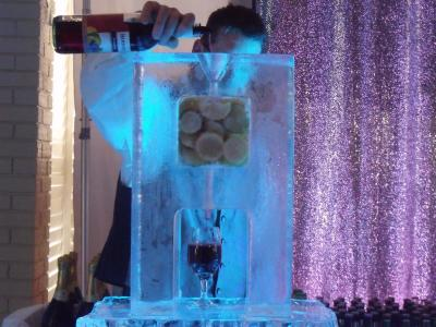 Martini Luge with Ice Bar & Glasses