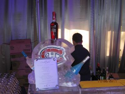 Ice Bars & Martini Luges
