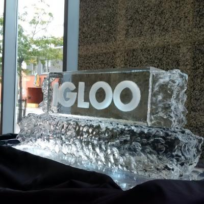 Igloo Ice Scul