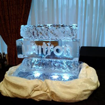 Unitron Ice Sculpture