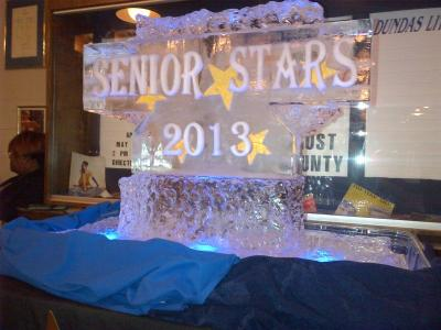Ice Sculpture (Senior Star 2013)