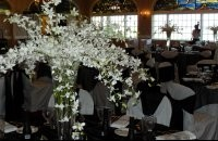Table Arrangement With White Flowers