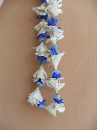 Blue and White Lei