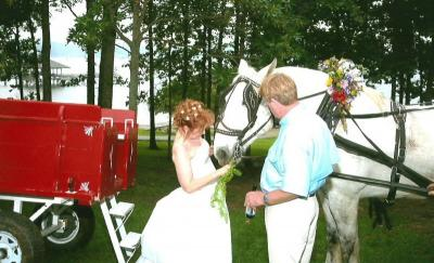 Bride With The Horse & Carraige