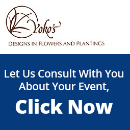Yoko's Designs In Flowers and Plantings, San Francisco, California