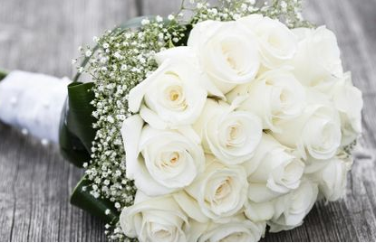 San Antonio, - TX - Florists Provide Wedding Flowers, Centerpieces And More At Wedding And Party Network